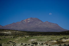 Monte no parque nacional peruano Fotografia de Stock Royalty Free