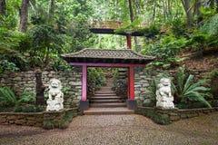 Monte pałac Tropican ogród Zdjęcia Stock