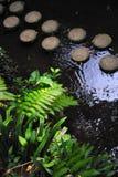 Monte Palace Tropical Garden– Monte, Madeira Royalty Free Stock Photos