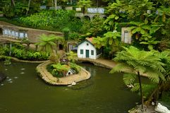 Monte Palace tropical garden. Small lake at Monte Palace tropical garden, Madeira, Funchal Stock Photos