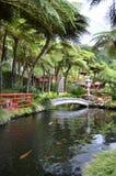 Monte Palace Tropical Gardens oriental e lagoas Fotografia de Stock