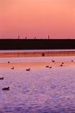 Monte par le lac Photographie stock