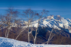 Monte rosa glacier from mottarone bright sunny day Stock Photography