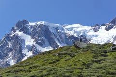 Monte Rosa kant royaltyfri foto