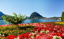 Monte San Salvatore seen from the park Stock Images