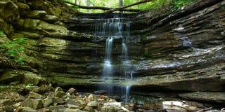 Monte Sano Nationalpark - Alabama Stockfotos