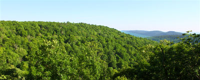 Monte Sano State Park - Alabama. The vast forested lands of Monte Sano State Park in Alabama Royalty Free Stock Photo