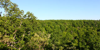 Monte Sano State Park Alabama Photographie stock