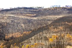 Tuscan Mountain devastated by a fire royalty free stock photography