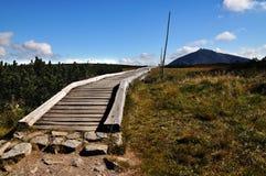 Monte Snezka Imagem de Stock