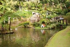 Monte Tropical Gardens Funchal Fotografering för Bildbyråer