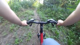 Monte uma bicicleta na câmera da ação da floresta video estoque