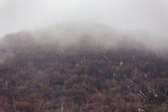 Monte Usu com neve e enevoe-o na parte superior e nas árvores abaixo perto do parque do urso de Noboribetsu no Hokkaido, Japão foto de stock