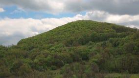 Monte verde vídeos de arquivo