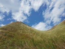 Monte verde com um fundo claro do céu azul Imagem de Stock Royalty Free