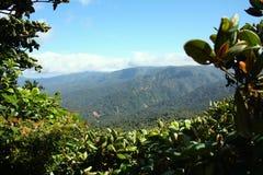 Monte Verde Mountain View Zdjęcie Royalty Free