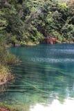 Montebello Lagoons. In Chiapas, México Royalty Free Stock Photos