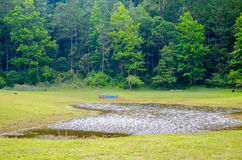 Montebello nationalpark, Chiapas stat, Mexico, Maj 25 royaltyfri bild