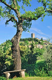 Montecatini nära Volterra, Tuscany, Italien Royaltyfria Foton
