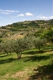montefalco Image libre de droits