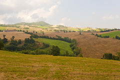 Montefeltro (Marches, Italy), landscape. Near Urbino at summer Royalty Free Stock Image