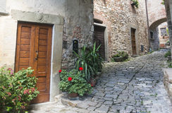 Montefioralle (Chianti, Tuscany) Arkivfoton