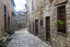 Montefioralle (Chianti, Tuscany). Montefioralle (Greve in Chianti, Florence, Tuscany, Italy): medieval village Stock Images