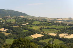 Monteltro (Marches, Italy), landscape at summer Royalty Free Stock Photos
