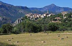 Montemaggiore, Corsica royalty-vrije stock foto's