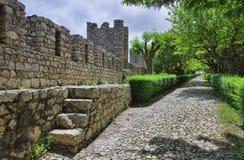 Montemor-ο-Velho Castelo Στοκ φωτογραφίες με δικαίωμα ελεύθερης χρήσης