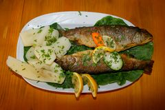 Montenegrisches Fische spaciality stockfotografie