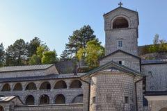 Montenegro - árboles en una 'promenade' pavimentada que eso lleva al monasterio de Cetinje fotos de archivo libres de regalías