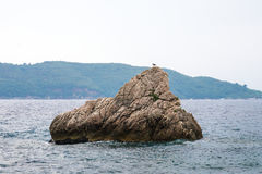 Montenegro, Adriatic sea. Early autumn, a beautiful rock on the sea background Royalty Free Stock Images