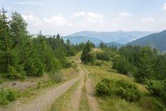 montenegro bergväg Royaltyfri Foto