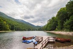 Montenegro, Biogradsko-Meer Stock Foto's
