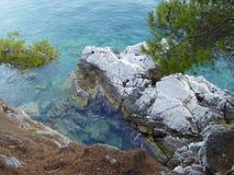 Montenegro, die felsige Küste mit Kiefern Lizenzfreie Stockfotos