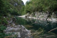Montenegro Durmitor Royaltyfria Foton
