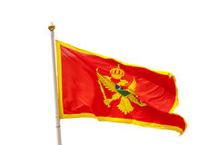 Montenegro flag isolated on white background Royalty Free Stock Image