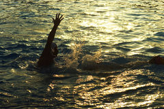 Montenegro, Herceg Novi - 23/06/2016: The player Olympic team Hungarian water polo swimming in the pool at sunset Stock Images