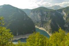 montenegro Het Nationale Park van Durmitor De canion van de Pivarivier Royalty-vrije Stock Foto's