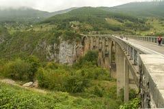 montenegro Het Nationale Park van Durmitor Tara River Canyon Royalty-vrije Stock Foto's