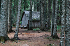 Montenegro house in forest. A fairytale house in the black forest of Montenegro near the black lake Stock Photography