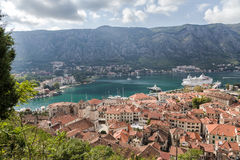 Montenegro. Kotor Stock Images