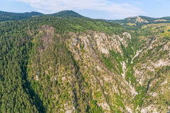 Montenegro mountains forest aerial Stock Images