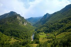 Montenegro. Mountains. Tara river Stock Photos