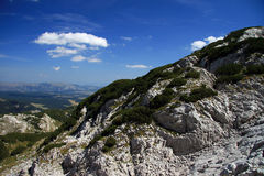 Montenegro. National park Durmitor. Summer. Travel in Montenegro. National park Durmitor Stock Image