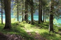 Montenegro. Rest in Montenegro. National park Durmitor Stock Photos