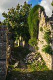 Montenegro ruins of a medieval town. Old Bar Stock Images