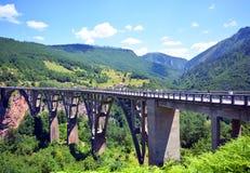 Montenegro, rzeka smoła, most, krajowy naturalny park obraz stock