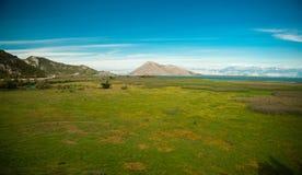 Montenegro, Shkoder lake panorama. Wide green field Stock Image